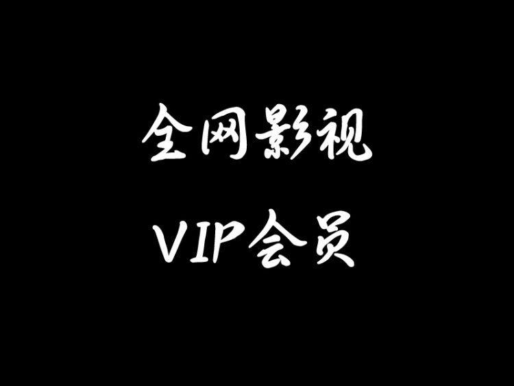 初一影视全网影视VIP会员卡平台简介及营利方式